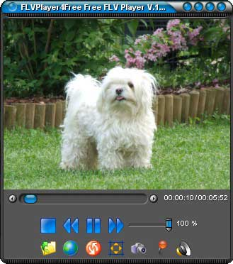 FLVPlayer4Free 2.5.0.0